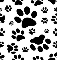 Trace of cats vector