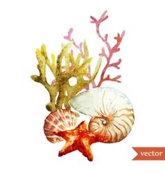 Watercolor  sea coral shell vector