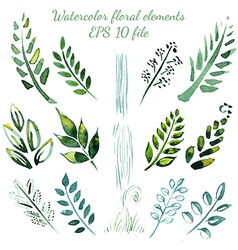 Watercolor flowers and leaves elements vector