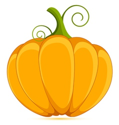 Decorative pumpkin vector