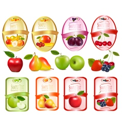 Set of labels with berries and fruit vector