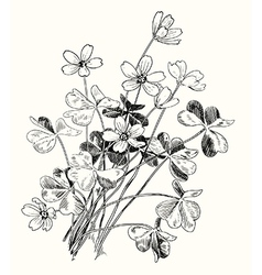 Spring design with forest flowers vector