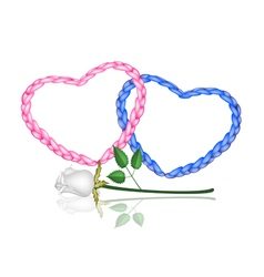 Two rope heart with a white rose vector