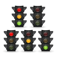 Traffic light vector