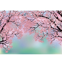 Background with blossoming trees vector