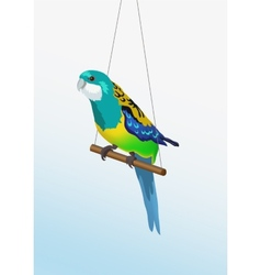 Realistic colorful parrot is sitting on the vector