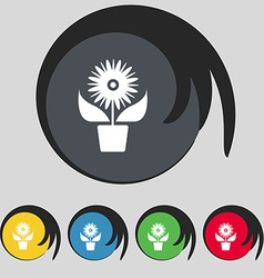 Flowers in pot icon sign symbol on five colored vector
