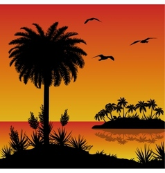 Tropical island palms flowers and birds vector