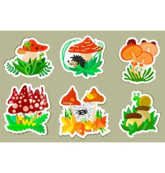 Mushrooms stickers vector