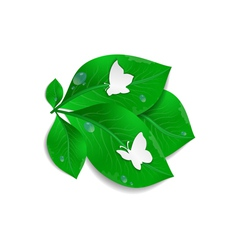 Paper butterflies and green leaves vector