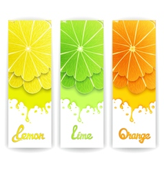 Citrus juice design vector