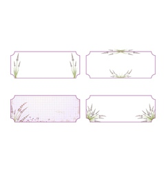 Lavender flower label collection vector