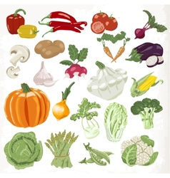 Set of vegetables icons isolated on white vector