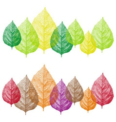 Colorful vein leaves set vector