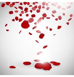 Background of rose petals vector
