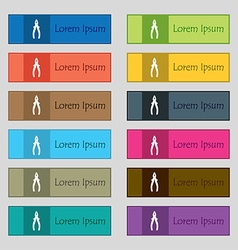Pliers icon sign set of twelve rectangular vector