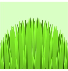 Hill green grass vector