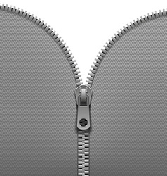 Zipper isolated on white background vector