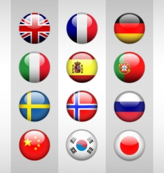 Glossy flags vector