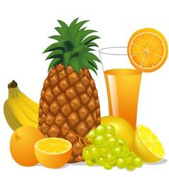 Juice and fruits banana pineapple orange grape vector