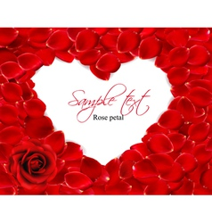 Beautiful heart of red rose petals vector