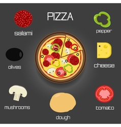 Pizza and ingredients - classic pizza elements vector