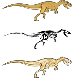 Allosaurus and skeleton vector