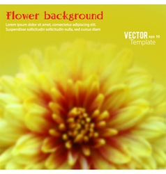 Floral theme template cover page booklet vector