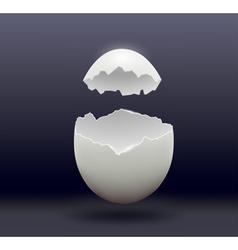Egg split in half on a dark background vector