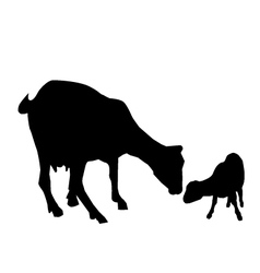 Goat and kid vector