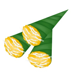 Thai toddy sugar palm cake in banana leaf cone vector