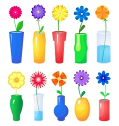 Flower in different vases set vector