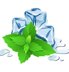 Ice cubes with mint isolated on white vector