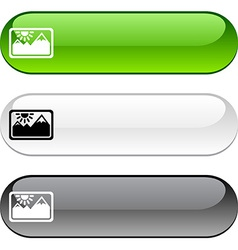 Picture button vector