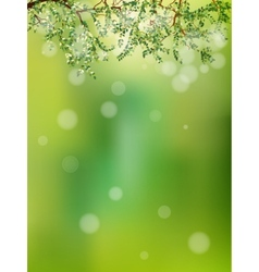 Summer in the forest abstract natural eps 10 vector