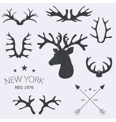 Deer horns set vector