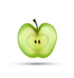 Slice of apple isolated vector