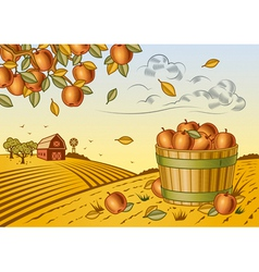 Apple harvest landscape vector