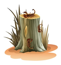 A stump with scorpions vector