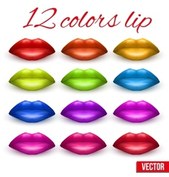 Shades of beautiful luscious multicolor lips vector