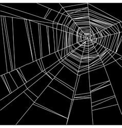 White spider web isolated on the black background vector