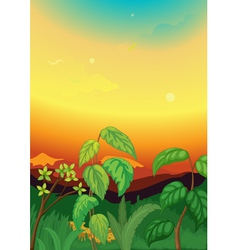 Sunset scene in jungle vector