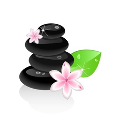 Zen stones with flower and leaf vector