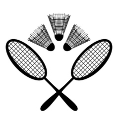 Equipment badminton vector