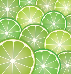 Pattern limes slices vector