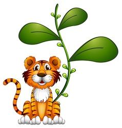 A tiger beside a vine vector