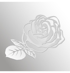 Abstract rose cut out of paper vector