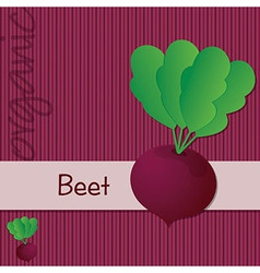 Vegetable background vector