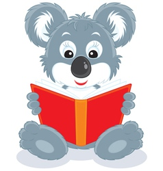 Koala cub reading a book vector