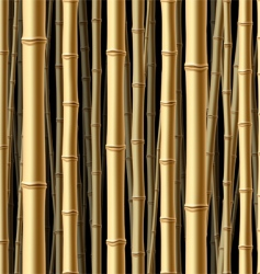 Seamless bamboo forest background vector